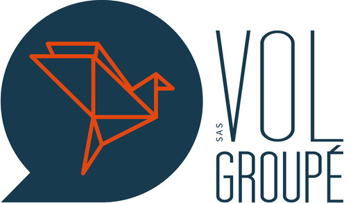 logo VOL GROUPE